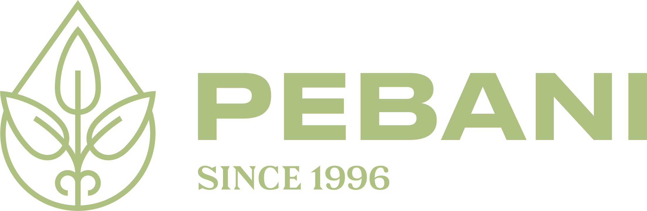 Pebani | Peruvian biodiversity for sustainable markets